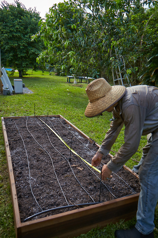 Irrigation for raised bed garden
