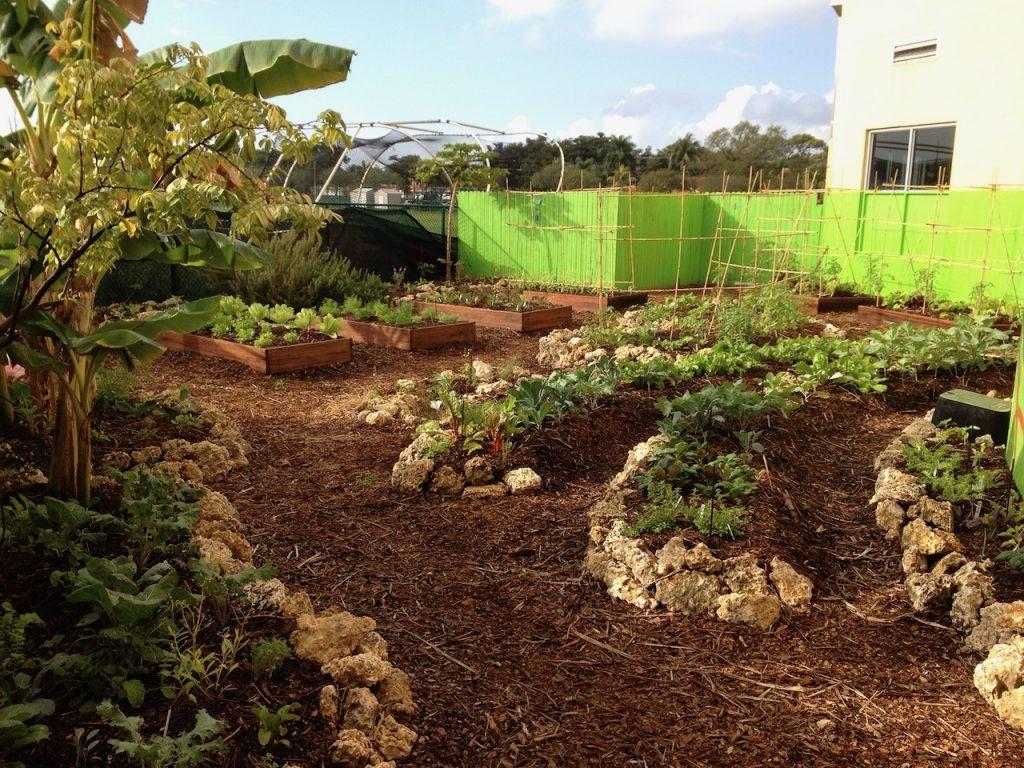 custom edible landscape school garden